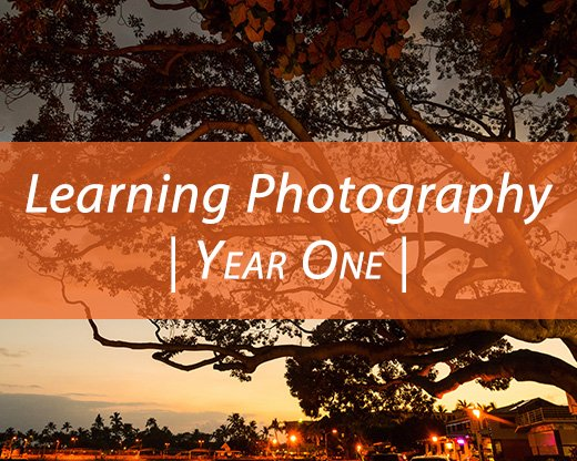 IntentionallyLost.com Learning Photography