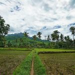 Probolinggo Indonesia