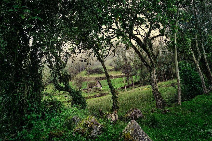 Intentionally Lost Hills of Pillaro