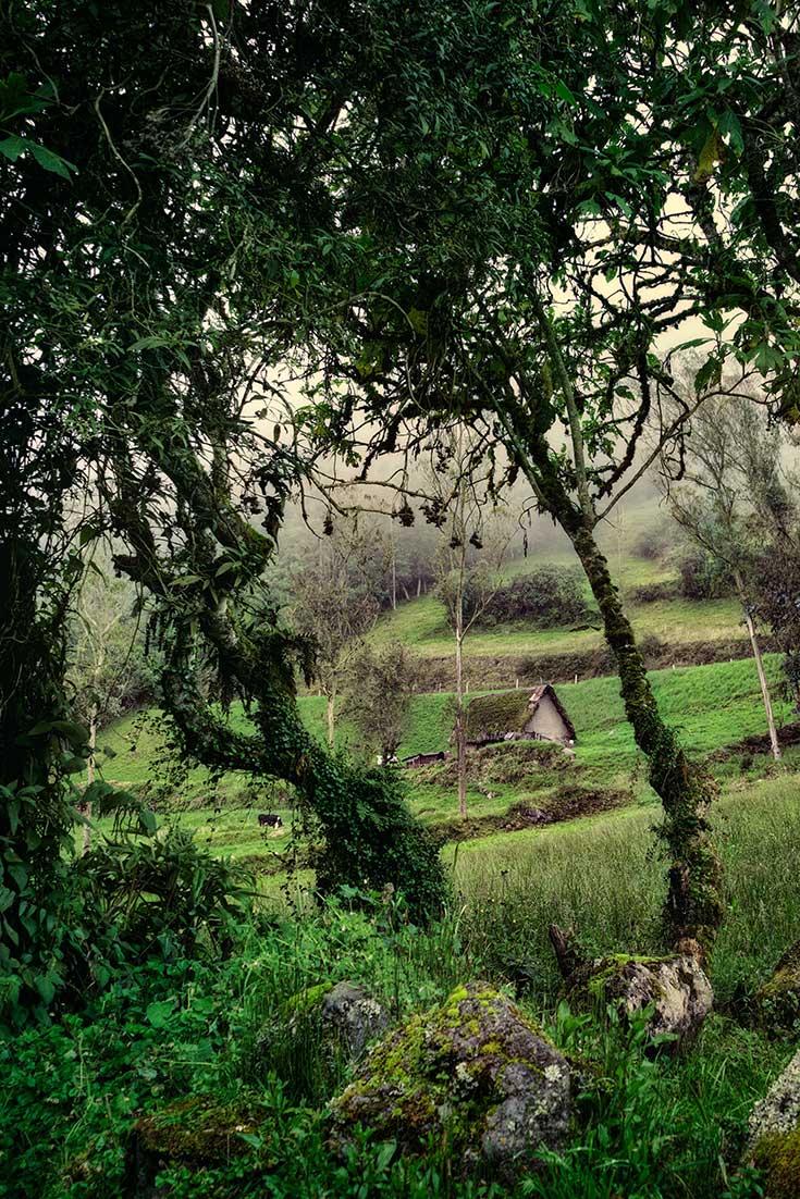 An idyllic mountain ranch in the Hills of Pillaro Ecuador