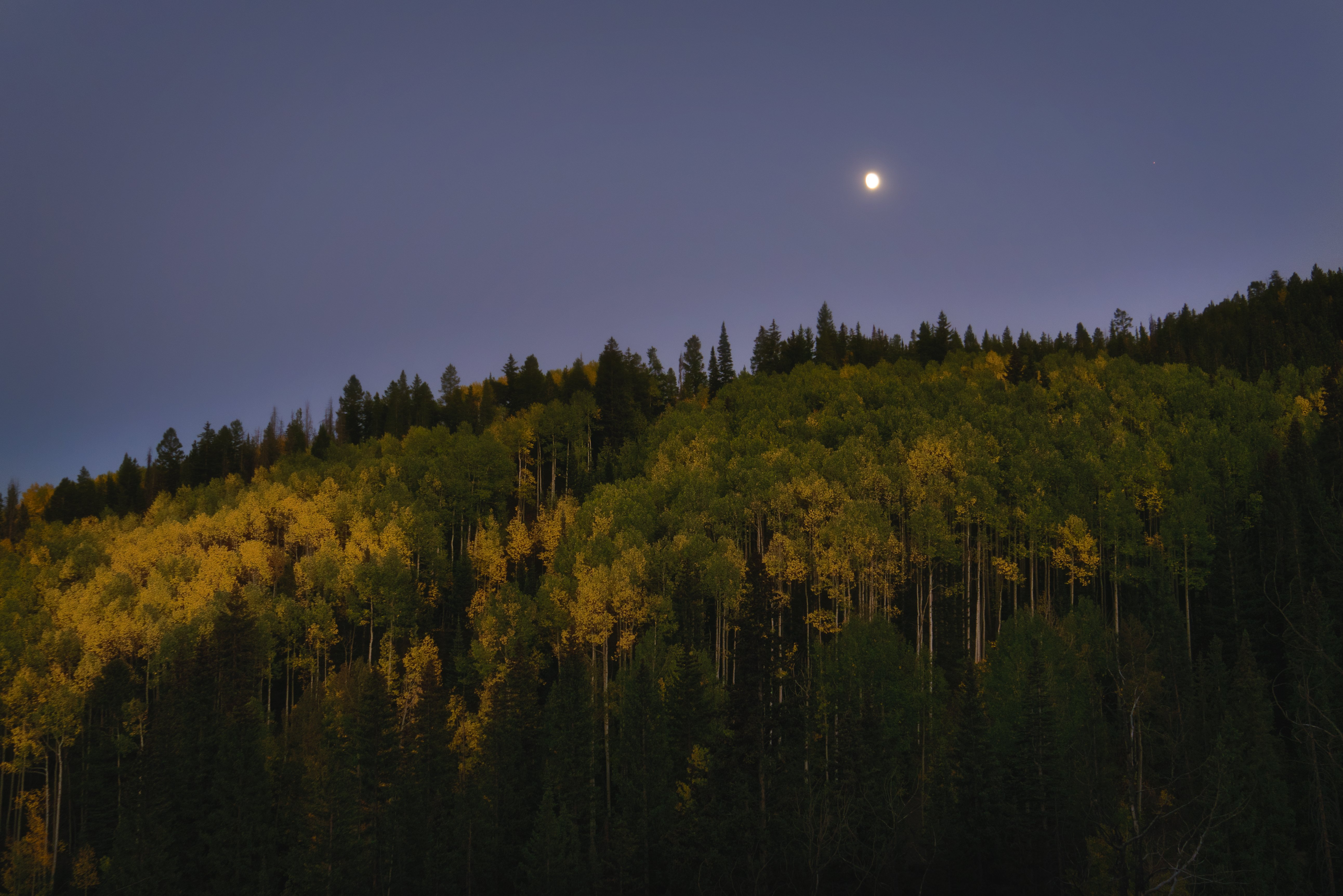 Moonrise over a grove of Aspens on Snowmass Mountain photographed on the Intentionally Lost cycling tour and photography workshop