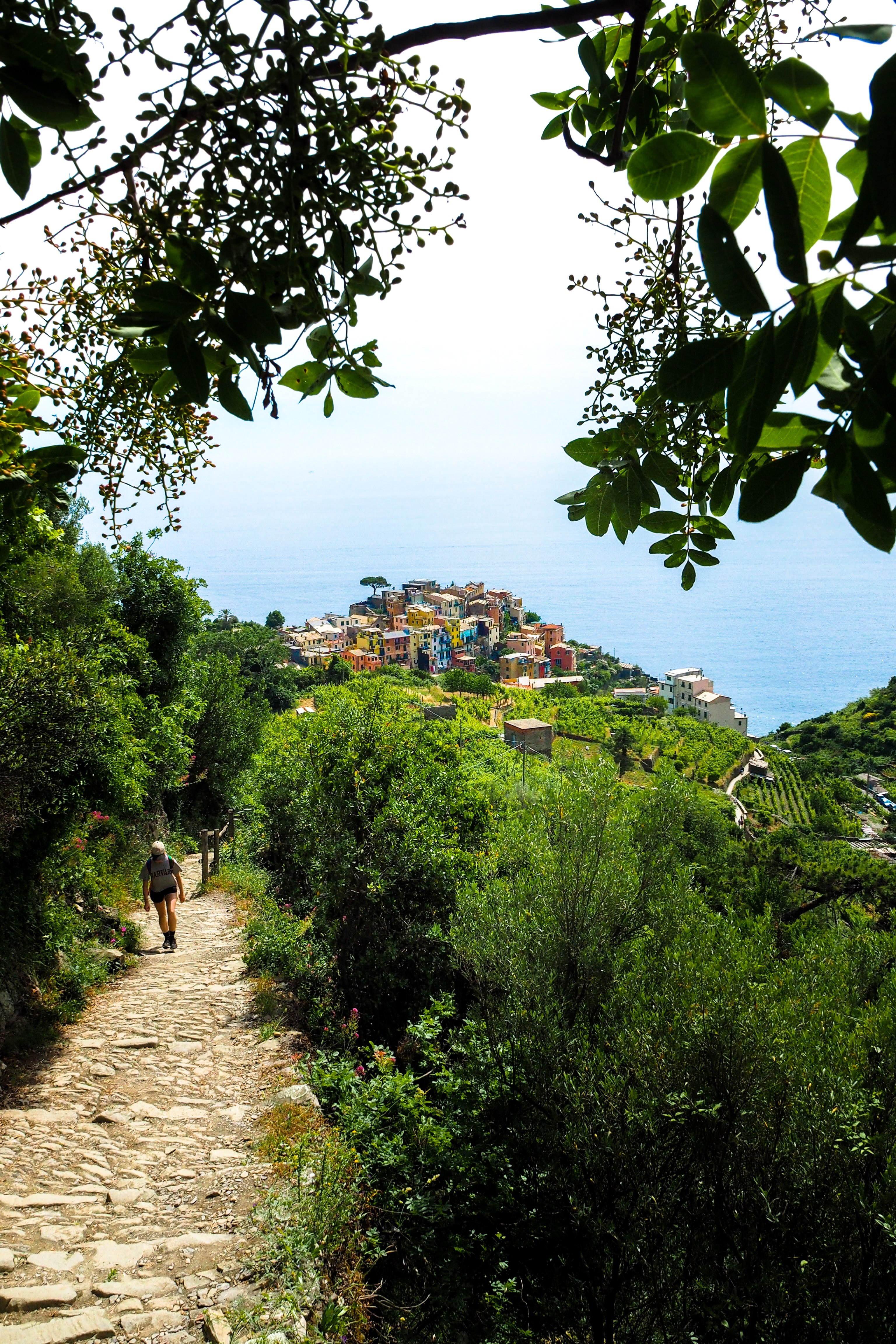 Hiking Cinque Terre on a Cycling and Photography Tour with Kevin Wenning and Intentionally Lost