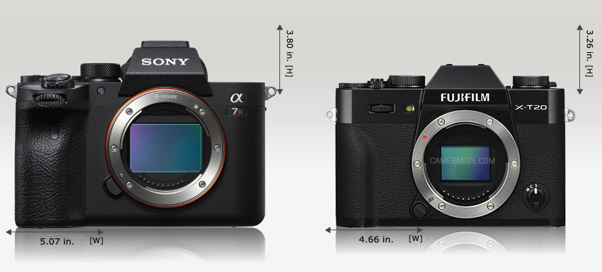 What camera should I buy. Comparing sizes and whether the camera fits you or not. #intentionallylost