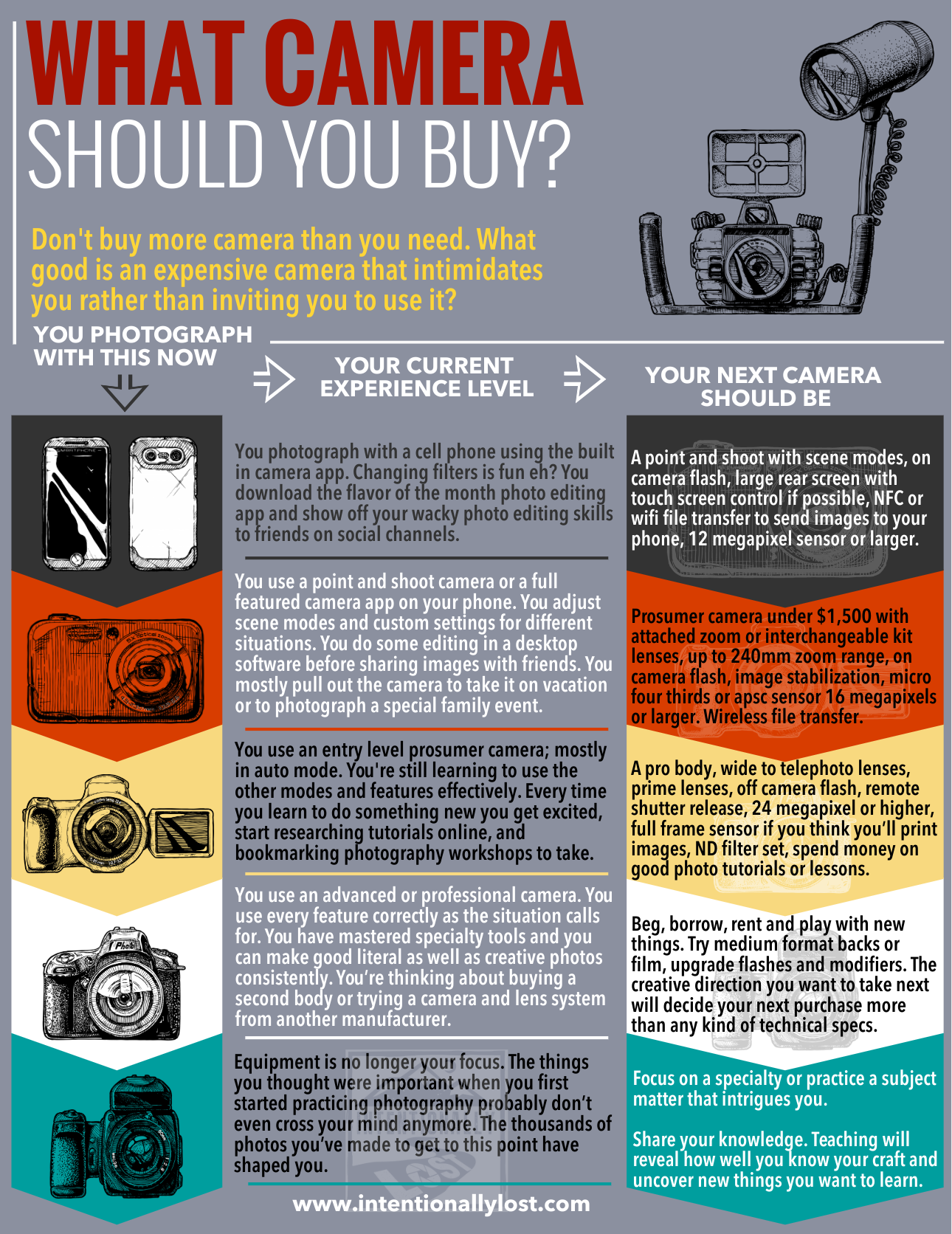 What camera should you buy - a growth progression from hobbyist to professional photographer