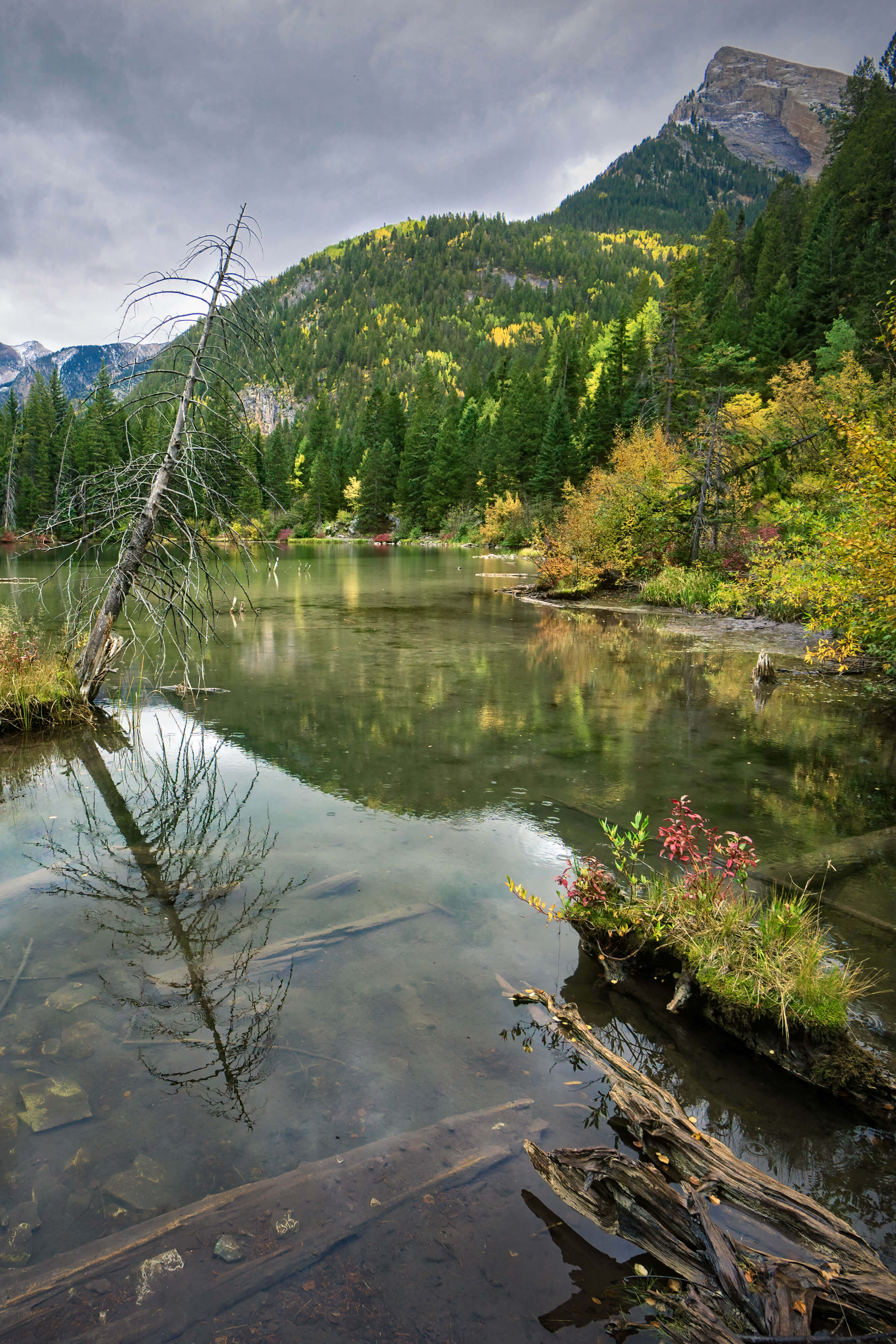 An overlooked photography stop on the road to visit Crystal Mill in Marble Colorado; Lizard Lake is worth a stop to explore on its own.