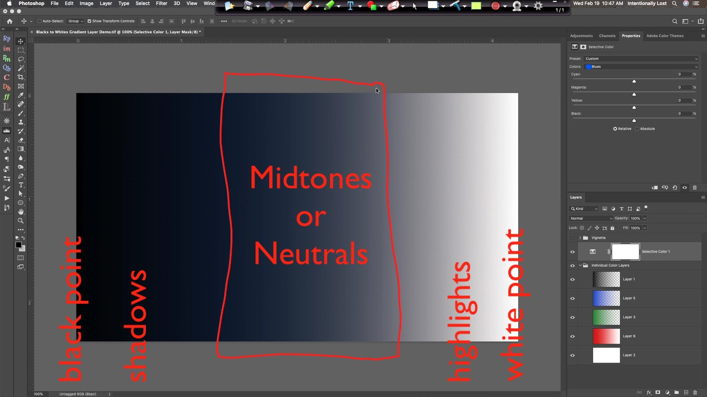 Difference between blacks, shadows, midtones, highlights and whites in an image #intentionallylost